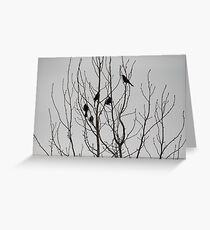 Fall Birds If you like, please purchase, try a cell phone cover thanks Greeting Card