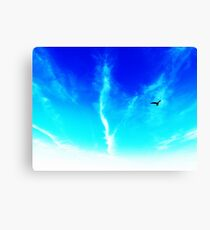 Bird In The Sky Canvas Print