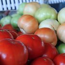 You say Tomato... by Elspeth  McClanahan
