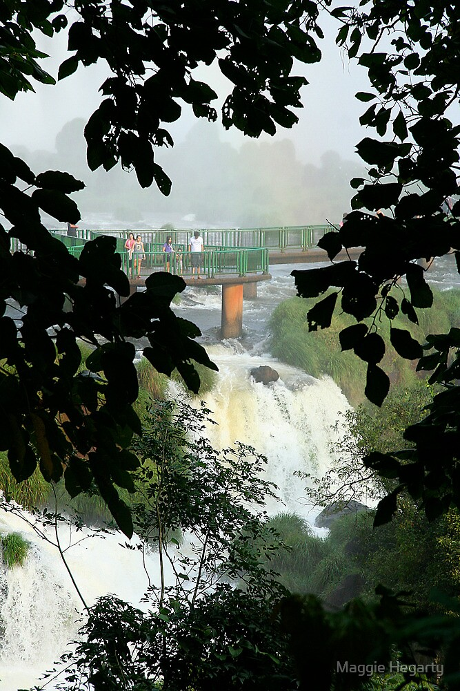 Above the falls, Brazil by Maggie Hegarty