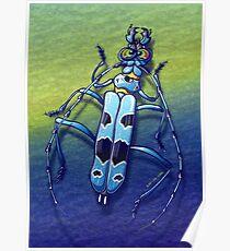 Super Beetle Poster