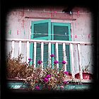 Ithaka balcony by sue mochrie