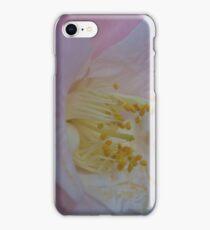 Close up photo of a rose iPhone Case/Skin