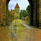Lismore Castle Gate by Martina Fagan