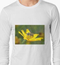 Eucerini Bee on Bidens flower Long Sleeve T-Shirt