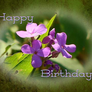 Birthday Wishes (for Audrey Clarke) by vigor