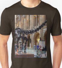 Special Diplodocus T-Shirt