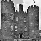 Enniscorthy Castle  by Martina Fagan