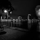 a black and white 4th of july by james smith