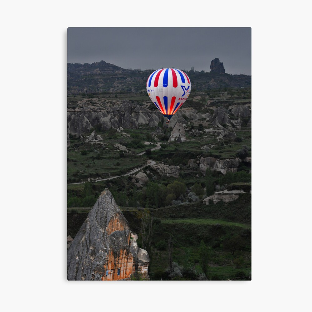 Flight over the Valley Canvas Print
