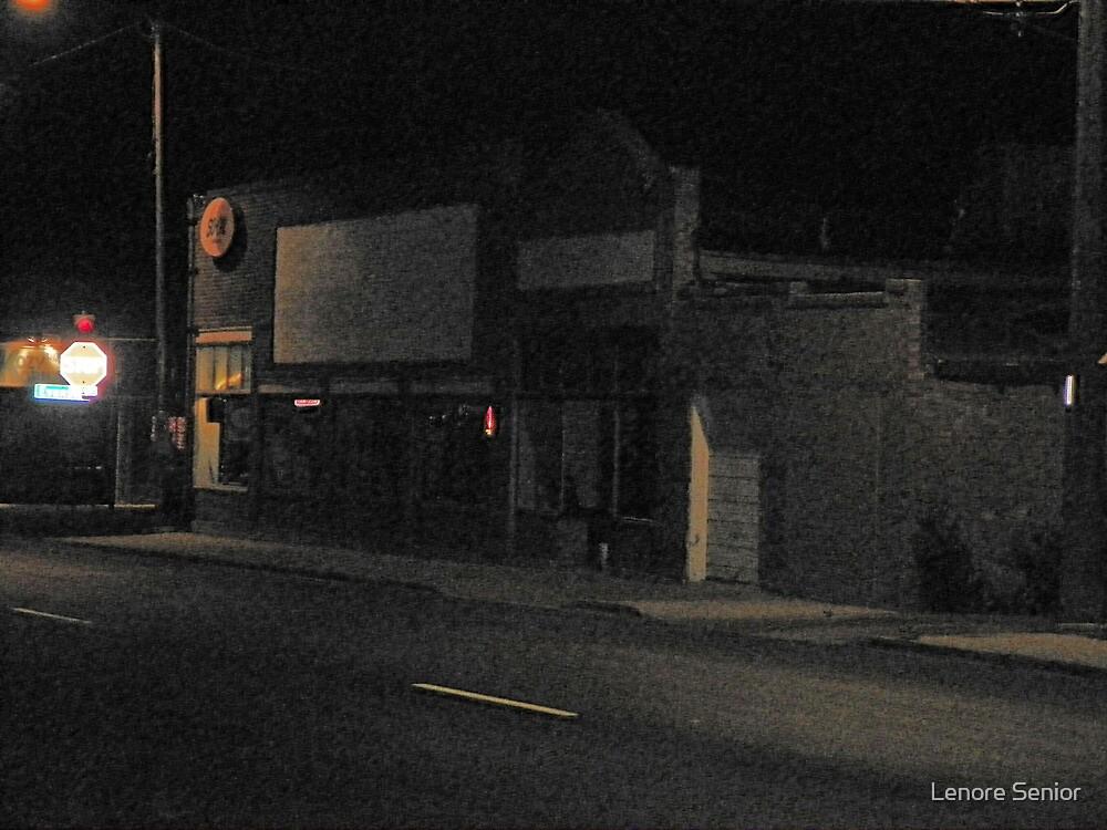 My Neighborhood at Night by Lenore Senior