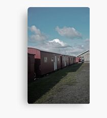 Sleepers Canvas Print