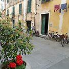 Street Scene in Levanto by joycee