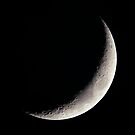 Crescent Moon, late afternoon by Duncan Waldron