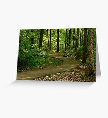 Path of Sunlight Dancing Greeting Card