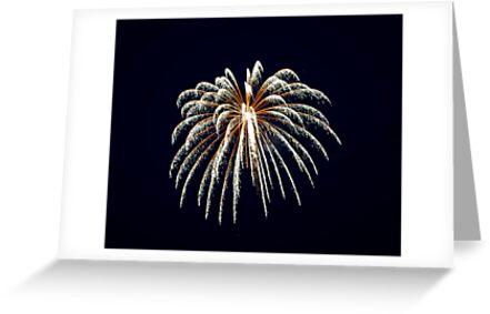2011 Wolfeboro Fireworks III by Katherine Murray