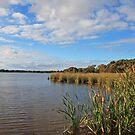 Lake Sepping by Robert Abraham