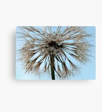 Water Brush Canvas Print