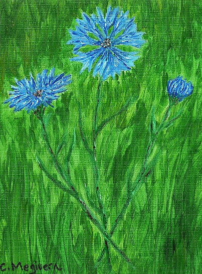 Cornflowers ~ Hope for a Cure - ALS by Carol Megivern