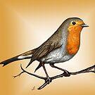 Robin bird by LauraMSS