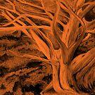 Fire in the wood by Pieta Pieterse