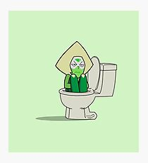 Peridot in the Toilet Photographic Print