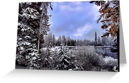 Snow at Big lake by Charles & Patricia   Harkins ~ Picture Oregon