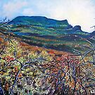 'Grandfather Mountain' by Jerry Kirk