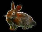 Medicine Wheel Totem Animals by Liane Pinel- Rabbit by Liane Pinel