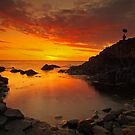 Causeway Colour.  by Fred Taylor