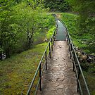 Footpath  by triciamary