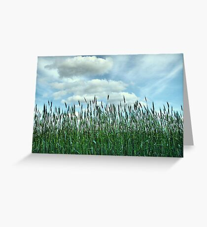 Looking to the Skies and See Greeting Card