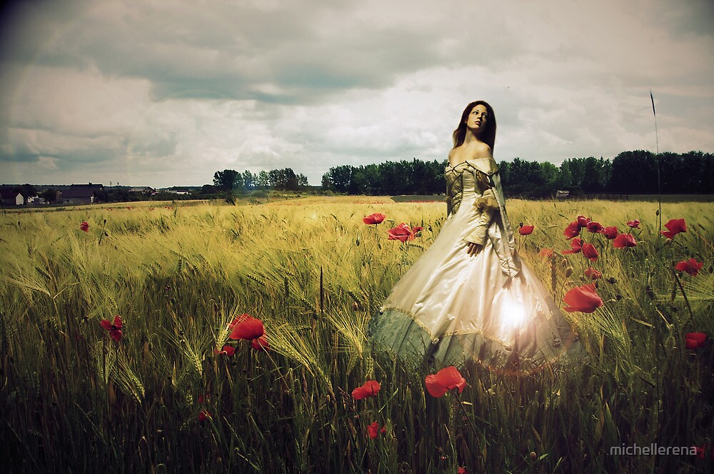 Through the dancing poppies by michellerena