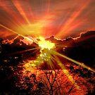 Sun rays © by Dawn Becker