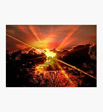Sun rays © Photographic Print