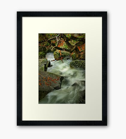 River Diversion Framed Print