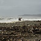 West Coast Beach by lukasdf