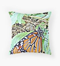 Danaus Plexippus © Throw Pillow