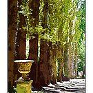 Bolobek Garden, Macedon by prbimages