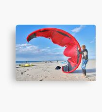 Battle with a kite Metal Print