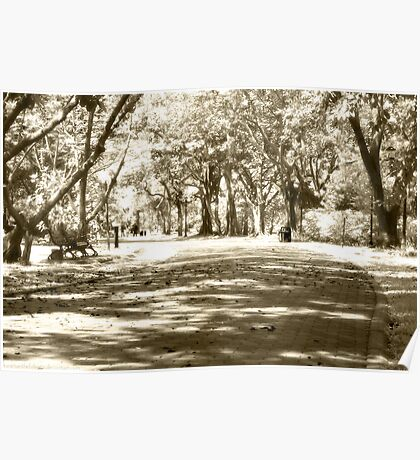 Quis Felis - Afternoon in the Park Poster