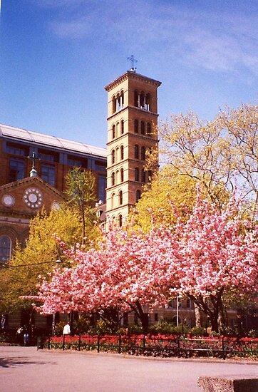 Judson Memorial Church, Greenwich Village, New York City by artwhiz47