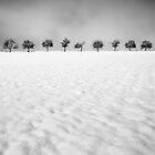 Nine by Alain Baumgarten