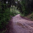 long walk  by kirstyr03