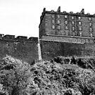 Edinburgh Castle by wildone