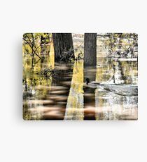 Mallard Duck on Flooding River Metal Print