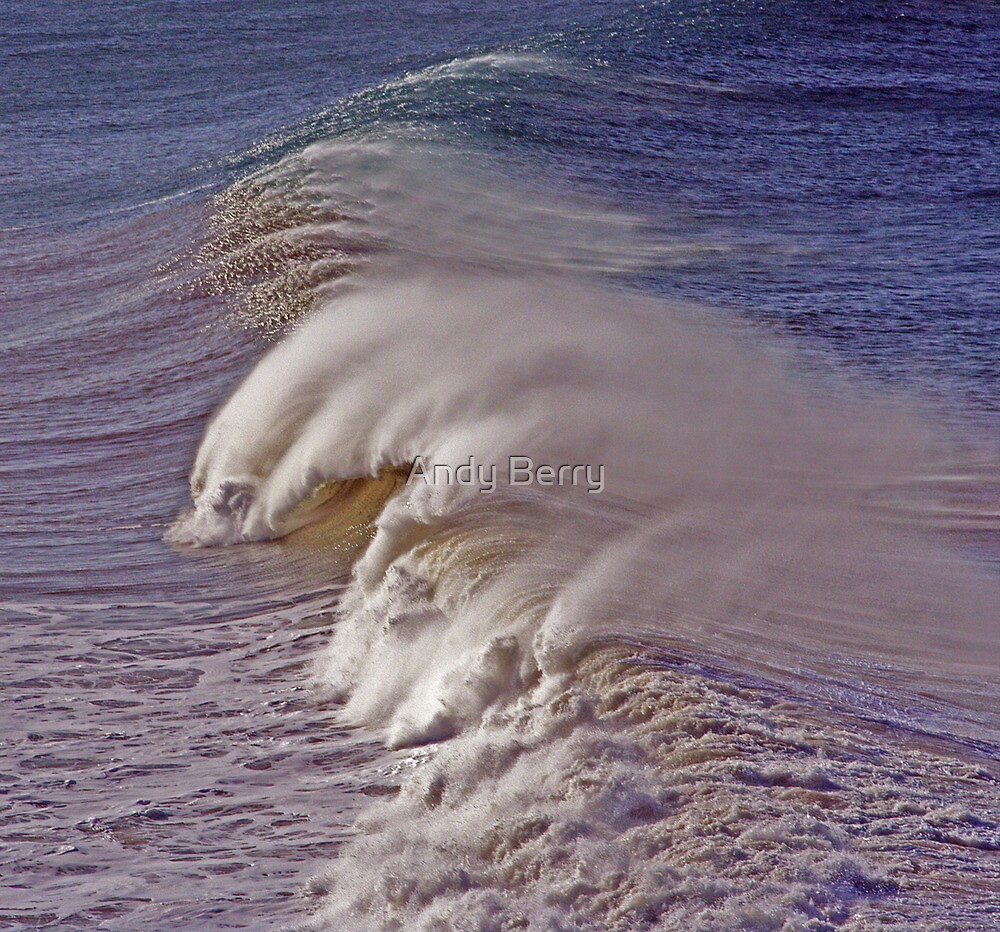 Wild surf at Point Addis by Andy Berry