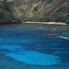 Hanauma Bay by Tracy Jansen
