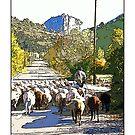 Castellane, Alpes-De-Haute-Provence by prbimages