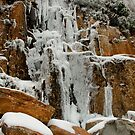 Frozen Falls by Patrick Reid